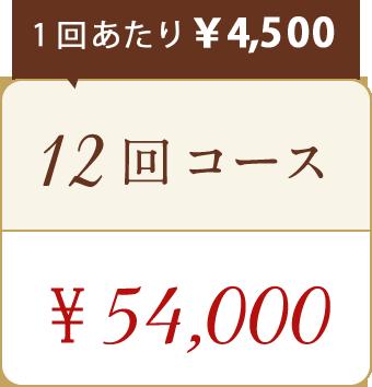 ドクタースカルプお試し12回コース54,000円
