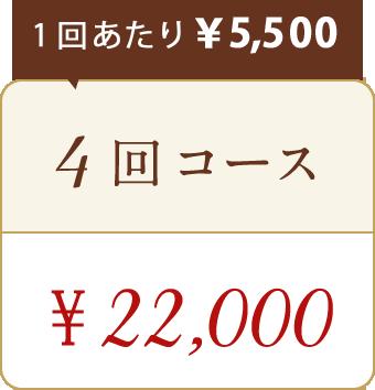 ドクタースカルプお試し4回コース22,000円
