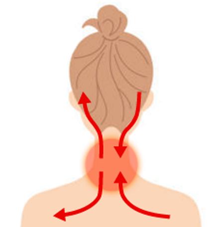 首・肩こりを温めてほぐすことで頭部への血流が改善