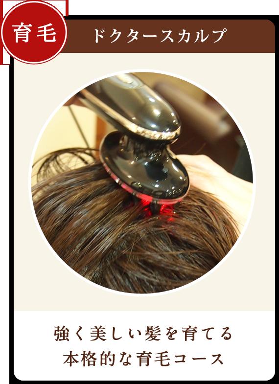 美容室で始める本格育毛「ドクタースカルプ」目白美容院ヴィエルのおすすめメニューです。